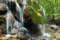 Картинка зелень, лес, деревья, камни, водопад, мох