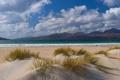 Картинка песок, трава, вода, горы, озеро