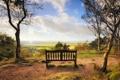 Картинка пейзаж, природа, скамья