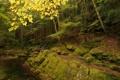 Картинка осень, лес, деревья, скала, река, камни