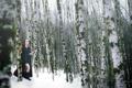 Картинка зима, девушка, меч, берёзы