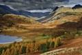 Картинка лес, горы, осень, великобритания, англия