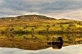 Картинка отражения, река, берег, холм