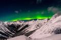 Картинка British, Winter, Green, Snow, Columbia, Valley, Asulkan