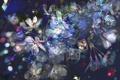 Картинка камни, искры, Цветы, кубы
