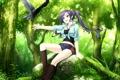 Картинка лес, девушка, птица, камень, & - sora no mukou de sakimasu you ni, game cg