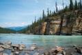 Картинка деревья, река, камни, скалы, ель, хвойные