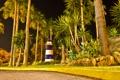 Картинка тропики, дорога, маяк, пальма, ночь, свет, парк