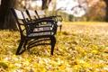 Картинка осень, парк, листва, скамейки