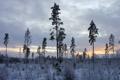 Картинка зима, иней, облака, деревья