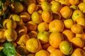 Картинка апельсины, листик, цитрус, много