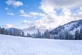 Картинка зима, лес, снег, горы, дом, елки