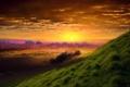 Картинка трава, солнце, облака, утро, склон