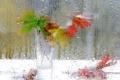 Картинка стекло, листья, капли