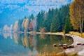 Картинка камни, река, лес, вода, осень, берег, деревья