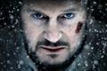 Картинка взгляд, актер, Liam Neeson, The Grey, лиам нисон