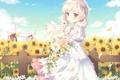 Картинка лето, подсолнухи, настроение, аниме, девочка, ogiwara kyouko