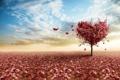 Картинка листья, ветки, небо, розовые, сердце, дерево