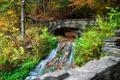 Картинка осень, лес, листья, деревья, мост, парк, река