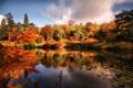 Картинка осень, пруд, парк, беседка