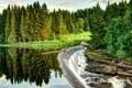 Картинка лес, деревья, природа, река, фото, водопад