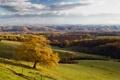 Картинка осень, деревья, холмы, поля
