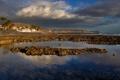 Картинка море, горы, пальма, дома, Испания, Канарские острова, Тенерифе