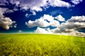 Картинка небо, трава, облака, природа, горизонт