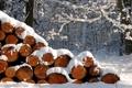 Картинка зима, дрова, снег, Природа, поленница