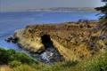 Картинка море, небо, трава, цветы, природа, океан, скалы