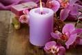 Картинка цветы, свеча, орхидея, flowers, Orchid, candle