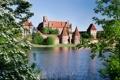 Картинка листья, деревья, цветы, город, река, замок, весна