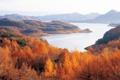 Картинка осень, деревья, горы, река, горизонт