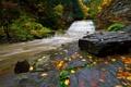 Картинка камни, река, скалы, поток, лес, осень, листья