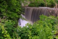 Картинка лес, деревья, заросли, водопад, поток