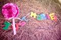 Картинка букет, настроения, сено, just merried, цветы