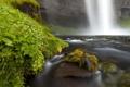 Картинка лето, природа, река, водопад