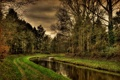 Картинка дорога, лес, вода, река, канал