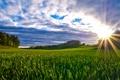 Картинка зелень, поле, трава, облака, лучи солнца