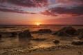 Картинка sea, sunset, Bay Shore Live Oak Park