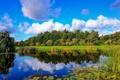 Картинка лес, облака, пруд, отражение, камыш, Финляндия, Finland