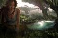 Картинка лес, деревья, ручей, растение, tomb raider, крофт, лара