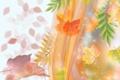 Картинка осень, листья, коллаж