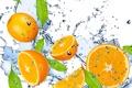 Картинка вода, капли, брызги, свежесть, жёлтый, лимон, фрукт