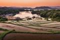 Картинка рассвет, поля, залив, рис, террасы, посевы, Филлипины