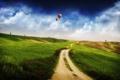 Картинка дорога, небо, трава, деревья, воздушные шары, горизонт, Пейзаж