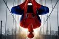 Картинка небо, мост, дома, паутина, костюм, видеоигра, Peter Parker
