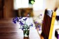 Картинка макро, цветы, стол