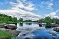 Картинка лес, вода, отражение, река, камни, растительность