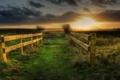 Картинка трава, закат, мост, забор, ограда